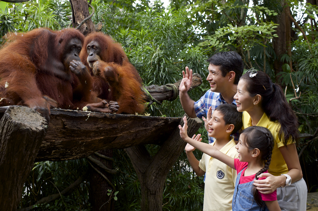 Singapore Tourism Board Makes Travelling With Kids Extra