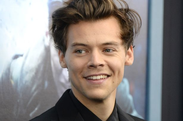 Harry Styles Is Reportedly Dating Victorias Secret Model Camille
